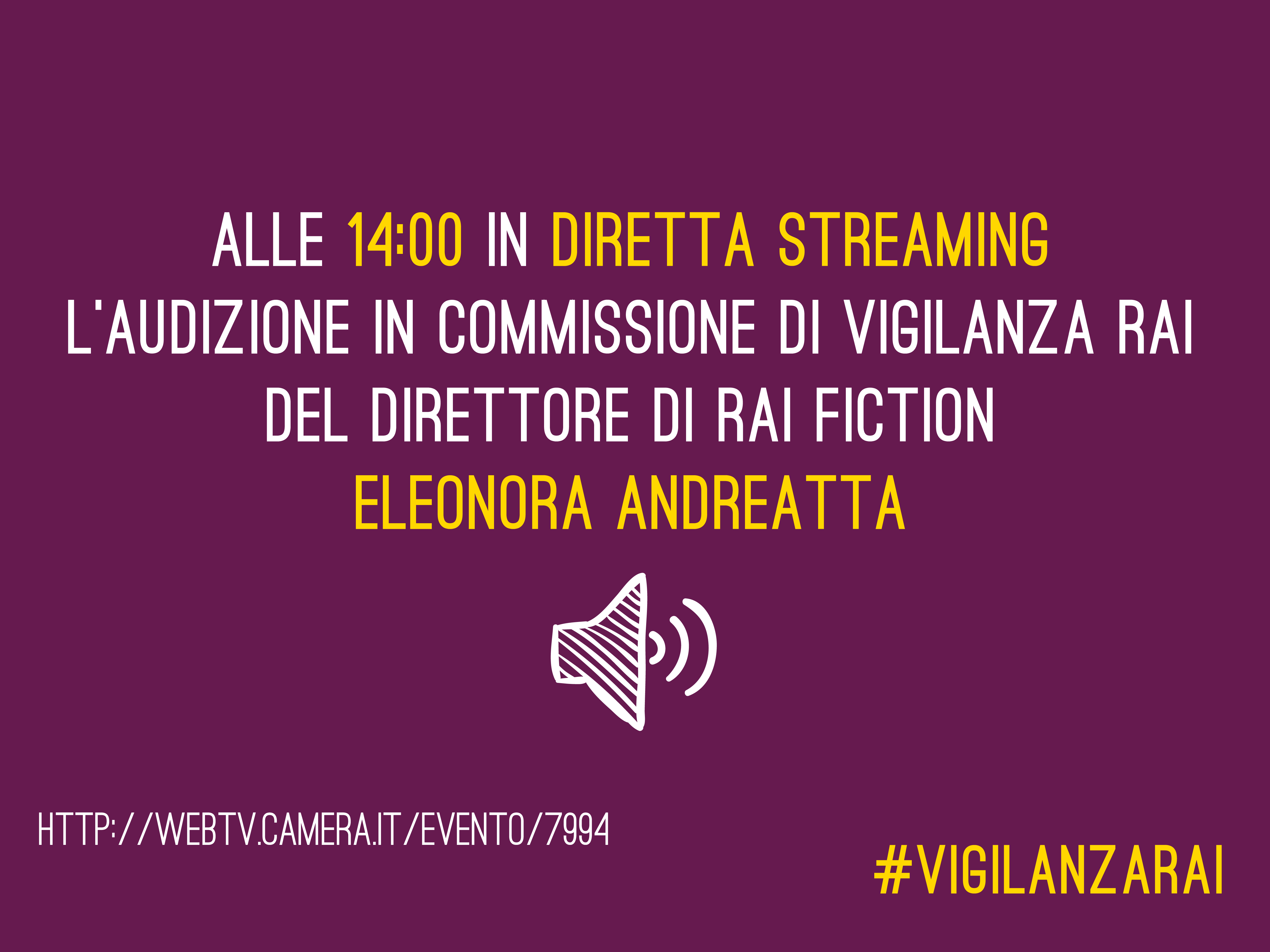 Audizione in commissione Vigilanza Rai Eleonora Andreatta