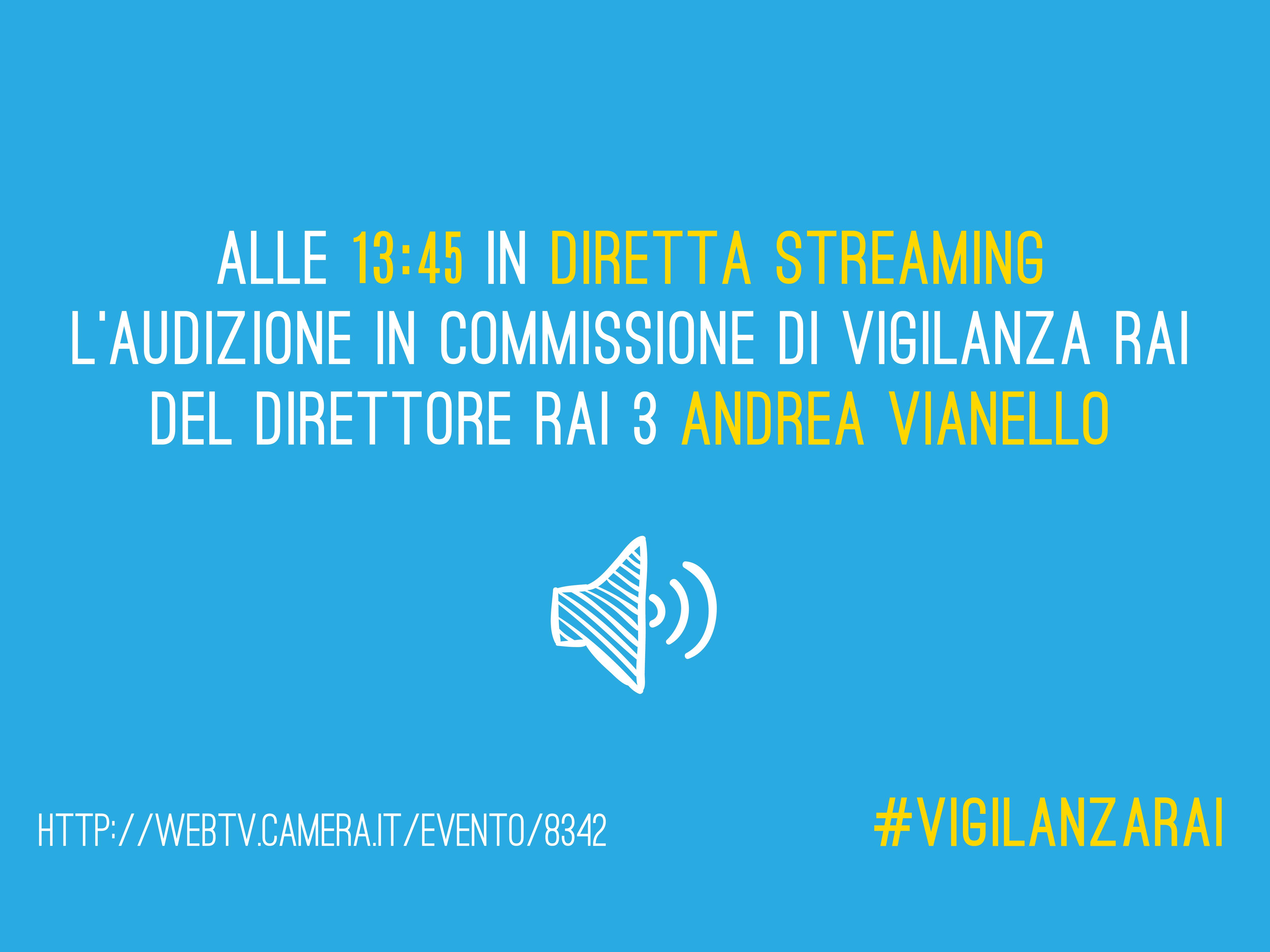 audizione_commissione_22-09-2015_vianello-2